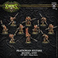Praetorian Keltarii / Swordsmen