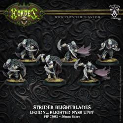 Strider Blightblades / Rangers