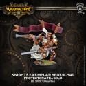 Knights Exemplar Seneschal