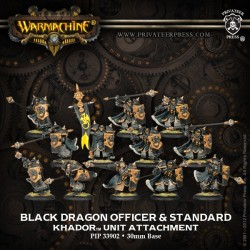 Black Dragon, Kit d'upgrade d'unité Iron Fang Pikemen