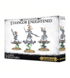 Tzaangor Enlightened / Tzaangor Skyfires