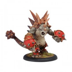 Rhinodon